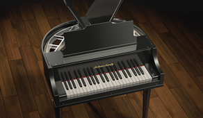 Mini Student Butterfly Piano